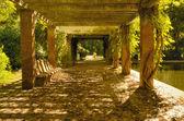 Autumn passage — Stock Photo