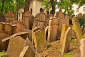 Jewish cemetery — Stock Photo