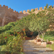 Almeria castle - 