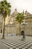 Cathedral in Jerez — Stock Photo