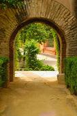 Garden arch — Stock Photo