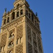 Giralda tower - Foto Stock