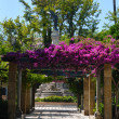 Stock Photo: Decorated garden Cadiz