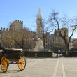 Horse carriage at Plaza del triunfo — Stock Photo