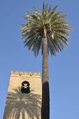 Minaret and palm — Stock Photo