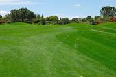 Green fairway golf — Stock Photo