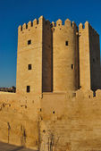 Calahorra Tower — Fotografia Stock
