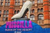 Musical Priscilla — Stock Photo