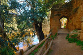 Walk along the Tinto river — Stock Photo
