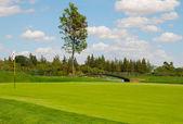 Bridge golf — Stock Photo