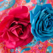 Fuchsia and turquoise roses — Stock Photo #23760605