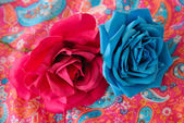 Fuchsia and turquoise roses — Stock Photo
