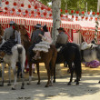Riders in Seville fair — Stock Photo #24269659