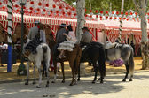 Riders in Seville fair — Stock Photo
