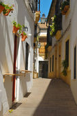 Traditional Cordoba Street — Stock Photo