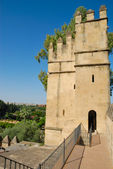 Tower Alcazar — Stock Photo