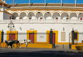 Horse coach at Seville bullring — Stock Photo