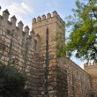 Walls of the alcazar — Stock Photo