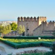 Tower of the Alcazaba in Almeria — Stock Photo