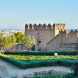 Tower of the Alcazaba in Almeria - Stock Photo