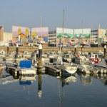 Sherry Port — Stock Photo