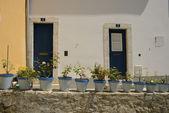 Decorated Lisbon street — Stock Photo