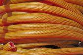 Orange hose — Stockfoto