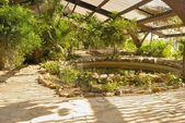 American garden Seville — Stock Photo
