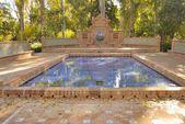 Su birikintisi bahçe — Stok fotoğraf