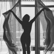 Woman silhouette seen through the window — Stock Photo #14677297