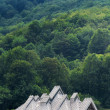 traditional mountain houses in the hills  — Stock Photo