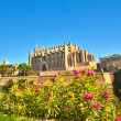 Cathedral of SantMariof Palma, Majorca. LSeu — Stock Photo #14689503