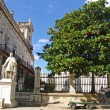 The Palacio de los Capitanes Generales. Havana — Stock Photo