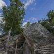 Coba. Mexico — Stock Photo #17385363