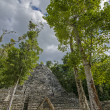Coba. Mexico — Stock Photo #17385857
