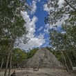 Coba. Mexico — Stock Photo #17386455
