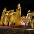 Cathedral of SIdelfonso in Merida — Stock Photo #18875763
