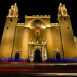 Cathedral of SIdelfonso in Merida — Stock Photo #18875775