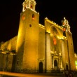 The Cathedral of San Idelfonso in Merida — Stock Photo