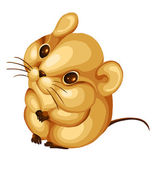 Hamster mouse rodent character cartoon style vector illustration — Stock Photo