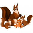 Animal squirrel family character cartoon style vector illustration white background isolated cut - Foto Stock