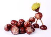 Conker worker — Stock Photo