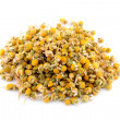 Heap dried chamomile — Stock Photo