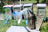 Starožitný včela kuřák — Stock fotografie