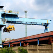 Large industrial crane for cargo containers — Stock Photo #25906753