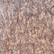 OSB. oriented strand board texture — Stock Photo
