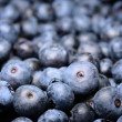 Ripe blueberries in the market — Stock Photo