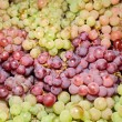 Wine grapes in market — Stock Photo