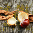 Horse chestnut on the wooden background — Stock Photo
