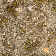 Tiny gravel texture — Stock Photo #41779345